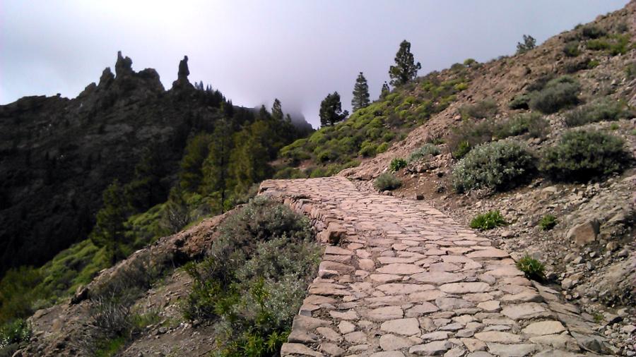 camino-roque-nublo