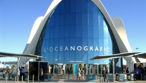 oceanografic-valencia