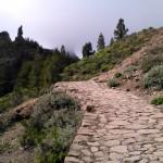 Ciudades y naturaleza para ver en Gran Canaria: Las Palmas, Roque Nublo… (Islas Canarias)